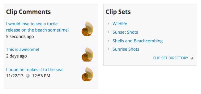 Clip Widgets